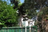 Villa in Vendita a Cinto Euganeo