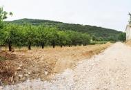 Terreno Edificabile Residenziale in Vendita a Brendola