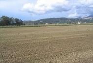 Terreno Edificabile Residenziale in Vendita a Sant'Urbano