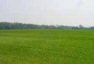 Terreno Edificabile Residenziale in Vendita a Lozzo Atestino