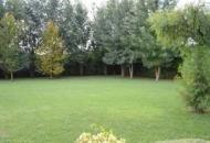 Villa in Vendita a Saccolongo