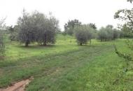 Terreno Edificabile Residenziale in Vendita a Bedizzole
