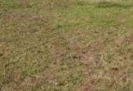 Terreno Edificabile Residenziale in Vendita a Origgio