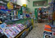 Immobile Commerciale in Vendita a Eboli