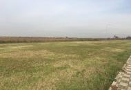 Terreno Edificabile Residenziale in Vendita a Roverbella