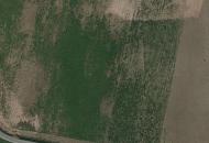 Terreno Edificabile Residenziale in Vendita a Montechiarugolo
