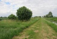 Terreno Edificabile Residenziale in Vendita a Ceregnano