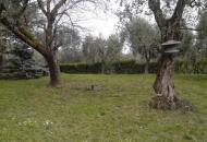 Terreno Edificabile Residenziale in Vendita a Moniga del Garda