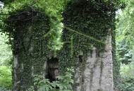 Terreno Edificabile Residenziale in Vendita a Tavernerio