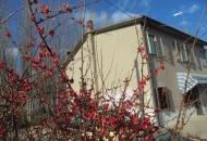 Villa Bifamiliare in Vendita a Ceregnano