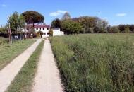 Villa Bifamiliare in Vendita a Vigonza