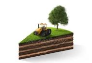 Terreno Edificabile Residenziale in Vendita a Zagarolo