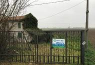 Villa Bifamiliare in Vendita a Arquà Polesine