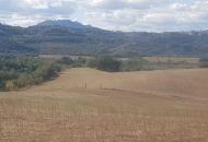 Terreno Edificabile Residenziale in Vendita a Torrita Tiberina