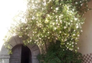 Villa a Schiera in Vendita a Licciana Nardi