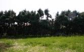 Terreno Edificabile Residenziale in vendita a Bedizzole, 9999 locali, zona Località: Bedizzole - Centro, prezzo € 75.000 | CambioCasa.it