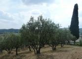 Terreno Edificabile Residenziale in vendita a Tregnago, 9999 locali, zona Località: Tregnago, prezzo € 200.000 | CambioCasa.it