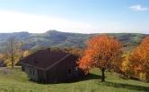 Villa in vendita a San Mauro di Saline, 3 locali, zona Località: San Mauro di Saline, prezzo € 80.000 | Cambio Casa.it