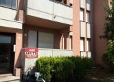 Appartamento in affitto a Rovigo, 2 locali, zona Zona: San Pio X, prezzo € 350 | CambioCasa.it