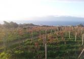 Terreno Edificabile Residenziale in vendita a Reggio Calabria, 9999 locali, zona Località: Pellaro, prezzo € 12.000 | Cambio Casa.it