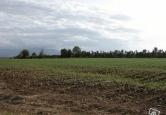 Terreno Edificabile Residenziale in vendita a Albignasego, 9999 locali, zona Località: Ferri, prezzo € 300.000 | Cambio Casa.it