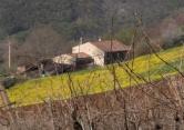 Rustico / Casale in vendita a Barbarano Vicentino, 2 locali, prezzo € 400.000 | CambioCasa.it