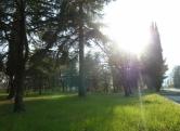 Terreno Edificabile Residenziale in vendita a Tregnago, 9999 locali, zona Località: Tregnago, Trattative riservate | Cambio Casa.it