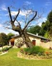 Rustico / Casale in vendita a Teolo, 6 locali, zona Zona: Teolo, Trattative riservate | CambioCasa.it