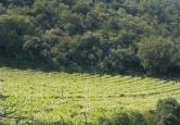 Terreno Edificabile Residenziale in vendita a Trento, 9999 locali, zona Località: Trento, prezzo € 260.000 | Cambio Casa.it
