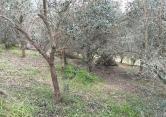 Rustico / Casale in vendita a Cinto Euganeo, 4 locali, prezzo € 100.000 | CambioCasa.it
