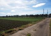 Terreno Edificabile Residenziale in vendita a San Donato di Lecce, 9999 locali, zona Località: San Donato di Lecce, prezzo € 75.000 | CambioCasa.it