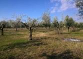 Terreno Edificabile Residenziale in vendita a Eboli, 9999 locali, zona Località: Eboli, prezzo € 40.000 | CambioCasa.it