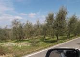 Terreno Edificabile Residenziale in vendita a Cavriglia, 9999 locali, prezzo € 28.000   CambioCasa.it