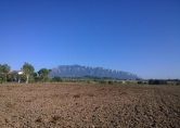 Terreno Edificabile Residenziale in vendita a Serre, 9999 locali, zona Località: Serre, prezzo € 35.000 | Cambio Casa.it
