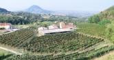 Rustico / Casale in vendita a Teolo, 15 locali, zona Zona: Castelnuovo, prezzo € 440.000 | Cambio Casa.it