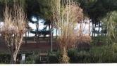 Appartamento in vendita a Silvi, 3 locali, zona Località: Silvi, prezzo € 120.000 | CambioCasa.it