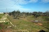 Terreno Edificabile Residenziale in vendita a Racale, 9999 locali, zona Località: Racale, prezzo € 15.000 | Cambio Casa.it