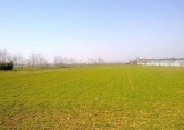 Terreno Edificabile Residenziale in vendita a Montichiari, 9999 locali, zona Località: Montichiari, prezzo € 75.000 | CambioCasa.it