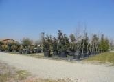 Terreno Edificabile Residenziale in affitto a Rovolon, 9999 locali, zona Zona: Bastia, prezzo € 1.300 | CambioCasa.it