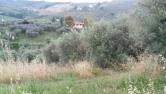 Terreno Edificabile Residenziale in vendita a Pianella, 9999 locali, zona Località: Pianella, prezzo € 20.000 | CambioCasa.it