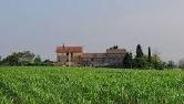 Terreno Edificabile Residenziale in vendita a Piove di Sacco, 9999 locali, zona Zona: Corte, prezzo € 750.000 | CambioCasa.it