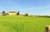 Terreno Edificabile Residenziale in vendita a Abano Terme, 9999 locali, zona Località: Abano Terme, prezzo € 165.000 | Cambio Casa.it