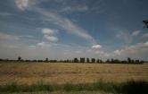 Terreno Edificabile Residenziale in vendita a Vigodarzere, 9999 locali, zona Zona: Tavo e Terraglione, prezzo € 220.000 | Cambio Casa.it