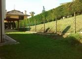 Villa Bifamiliare in affitto a Castelguglielmo, 3 locali, zona Località: Castelguglielmo - Centro, prezzo € 350 | Cambio Casa.it