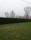 Villa in vendita a Legnaro, 4 locali, zona Località: Legnaro, prezzo € 390.000 | Cambio Casa.it