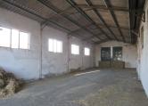 Capannone in vendita a Rovigo, 9999 locali, zona Zona: Mardimago, prezzo € 39.000 | CambioCasa.it