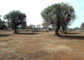 Terreno Edificabile Residenziale in vendita a Racale, 9999 locali, prezzo € 4.500 | Cambio Casa.it