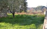 Terreno Edificabile Residenziale in vendita a Roma, 9999 locali, zona Località: Castelverde, prezzo € 180.000 | CambioCasa.it