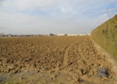 Terreno Edificabile Residenziale in vendita a Teolo, 9999 locali, zona Zona: San Biagio, prezzo € 210.000 | Cambio Casa.it