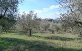 Terreno Edificabile Residenziale in vendita a Bagno a Ripoli, 9999 locali, zona Località: Bagno a Ripoli, prezzo € 25.000 | CambioCasa.it